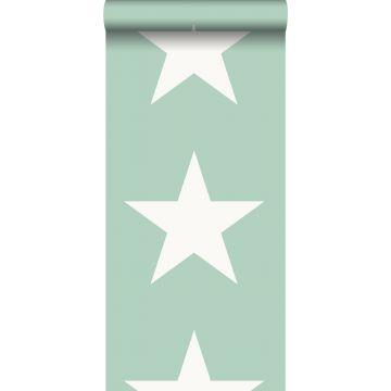 carta da parati stella verde menta