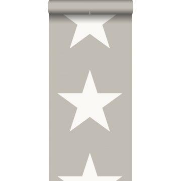 carta da parati stella grigio caldo