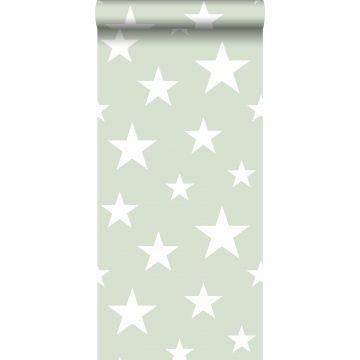 carta da parati grandi e piccole stelle verde menta e bianco