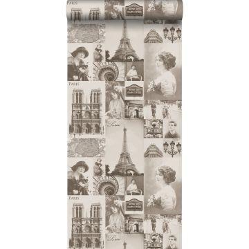 carta da parati Parigi marrone seppia