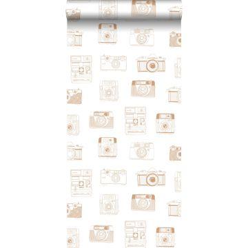carta da parati fotocamere polaroid marrone rame lucido