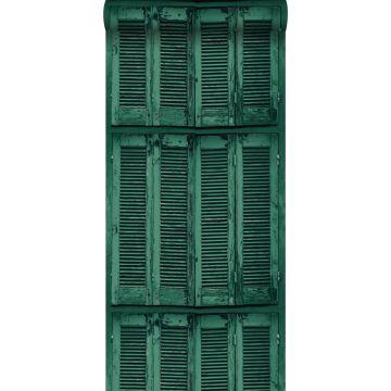 carta da parati persiane francese retrò vintage in legno alterato verde smeraldo intenso