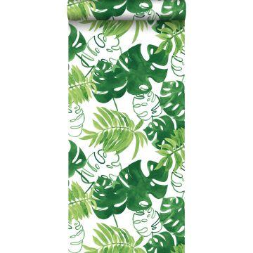 carta da parati foglie giungla tropicale dipinte verde giungla tropicale