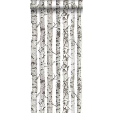 carta da parati tronchi di betulla grigio caldo chiaro