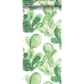 carta da parati cactus dipinto acquerello verde giungla tropicale