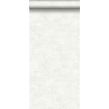 carta da parati liscia effetto calcestruzzo dipinto acquerello grigio caldo chiaro e bianco opaco