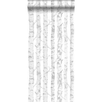 carta da parati tronchi di betulla argento e bianco