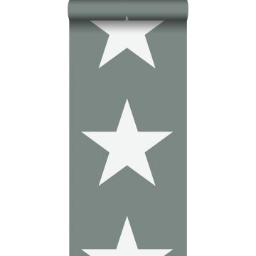 carta da parati stelle verde grigiastro