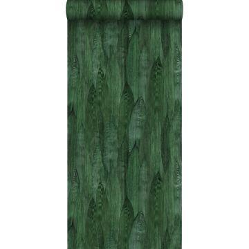 carta da parati foglie verde smeraldo