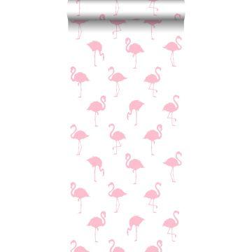 carta da parati fenicotteri rosa e bianco
