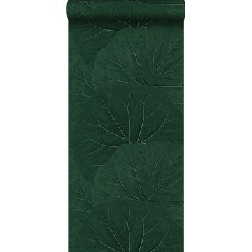 carta da parati foglie grandi verde smeraldo