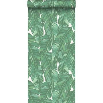 carta da parati foglie di banana verde giada