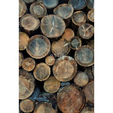 fotomurale tronchetti di legno marrone