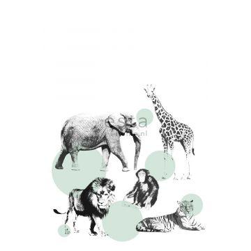 fotomurale animali verde menta