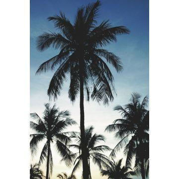 fotomurale palme blu, nero e beige