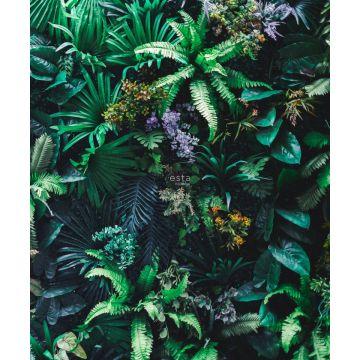 fotomurale piante tropicali verde
