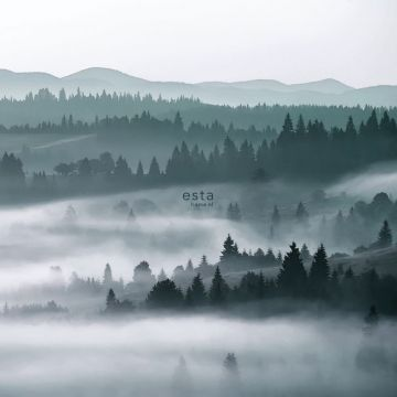 fotomurale montagne nebbiose verde
