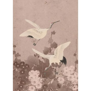 fotomurale uccelli gru rosa grigio