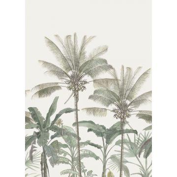 fotomurale palme beige chiaro e verde grigiastro