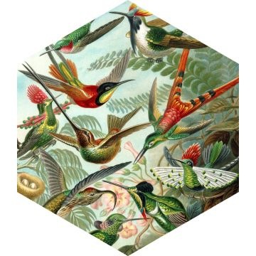 adesivo da parete uccelli verde giungla tropicale