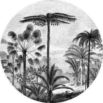 fotomurale autoadhesivo tondo paesaggio con palme bianco e nero