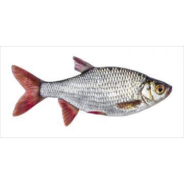 adesivo da parete pesce grigio e rosso