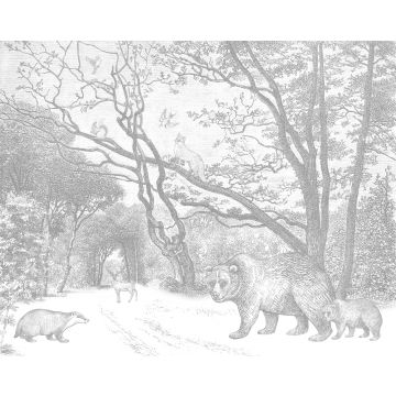 fotomurale foresta con animali della foresta grigio