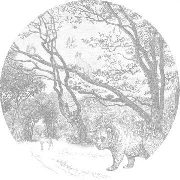 fotomurale autoadhesivo tondo foresta con animali della foresta grigio